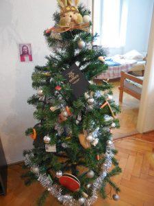 Vianočný stromček misionárov